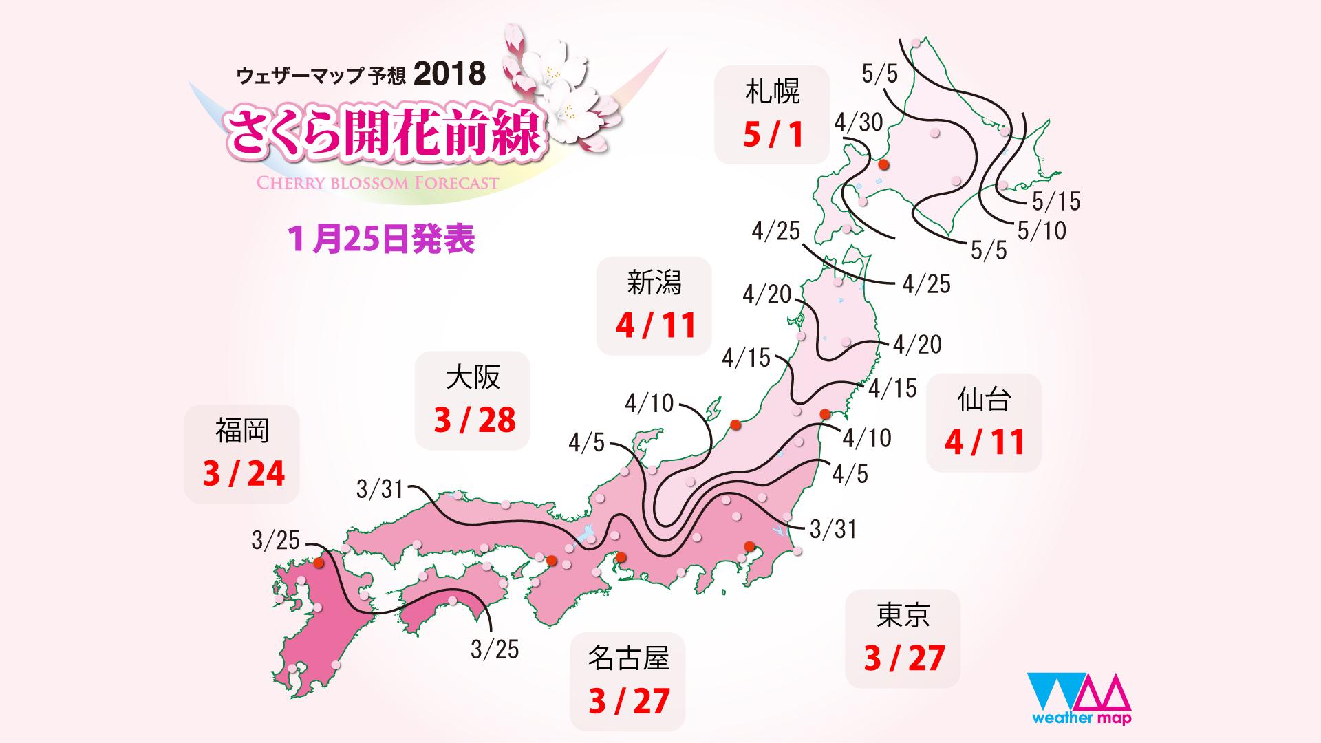 日本樱前线