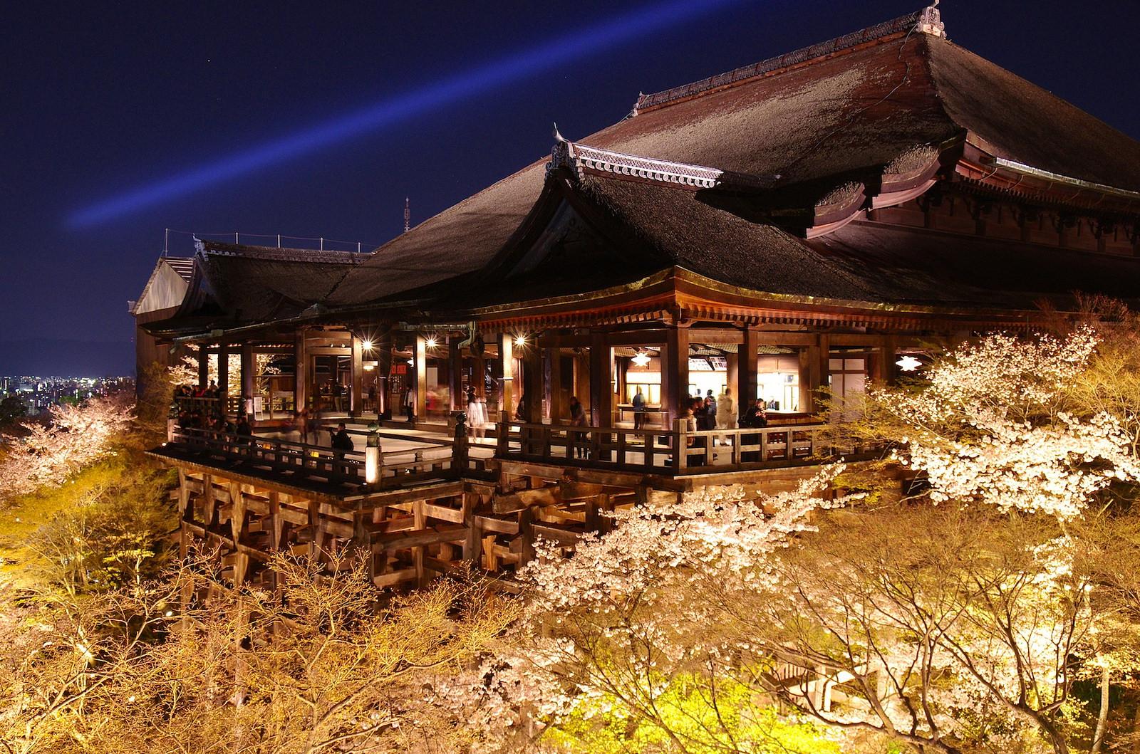清水寺樱花