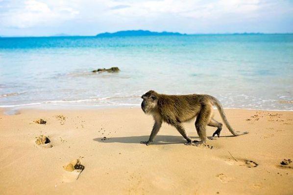 泰国兰塔岛