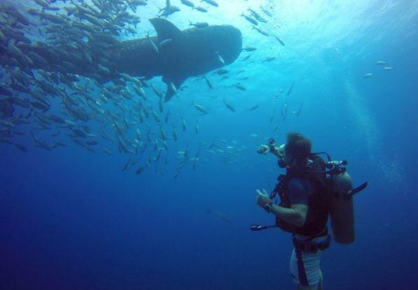 泰国帕岸岛