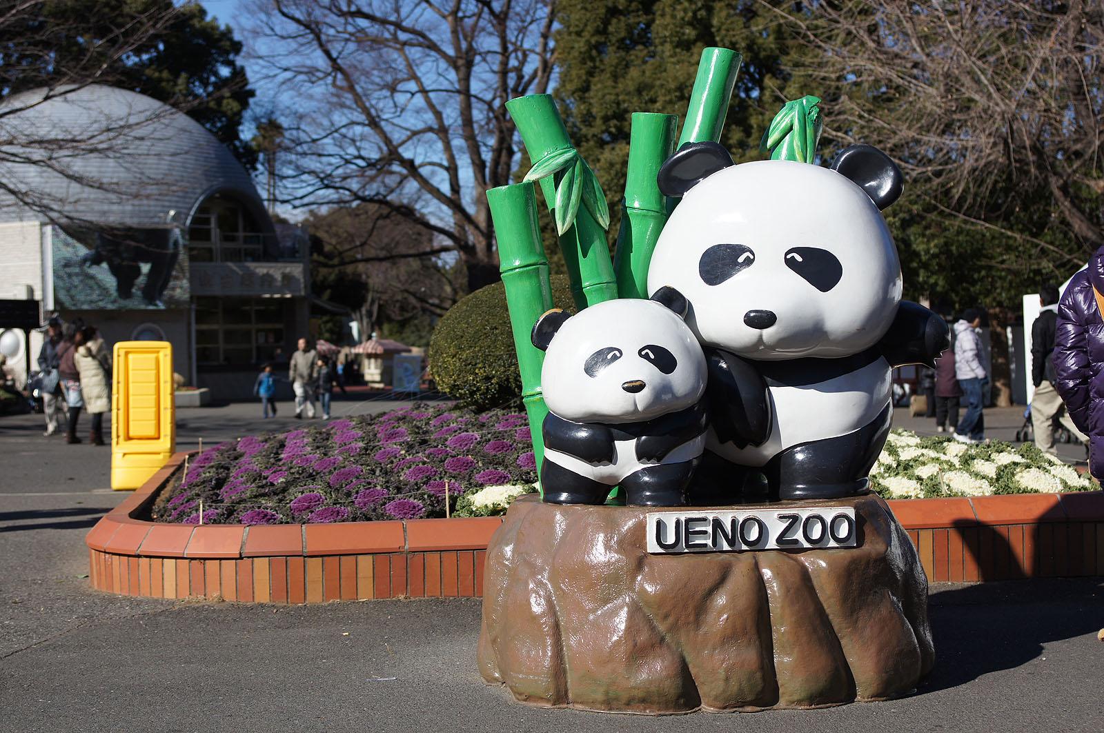 壁纸 大熊猫 动漫 动物 卡通 漫画 头像 1600_1063