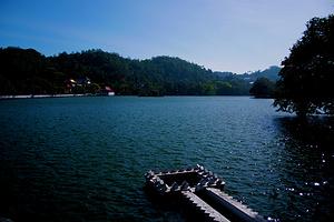 斯里兰卡经典自然之旅