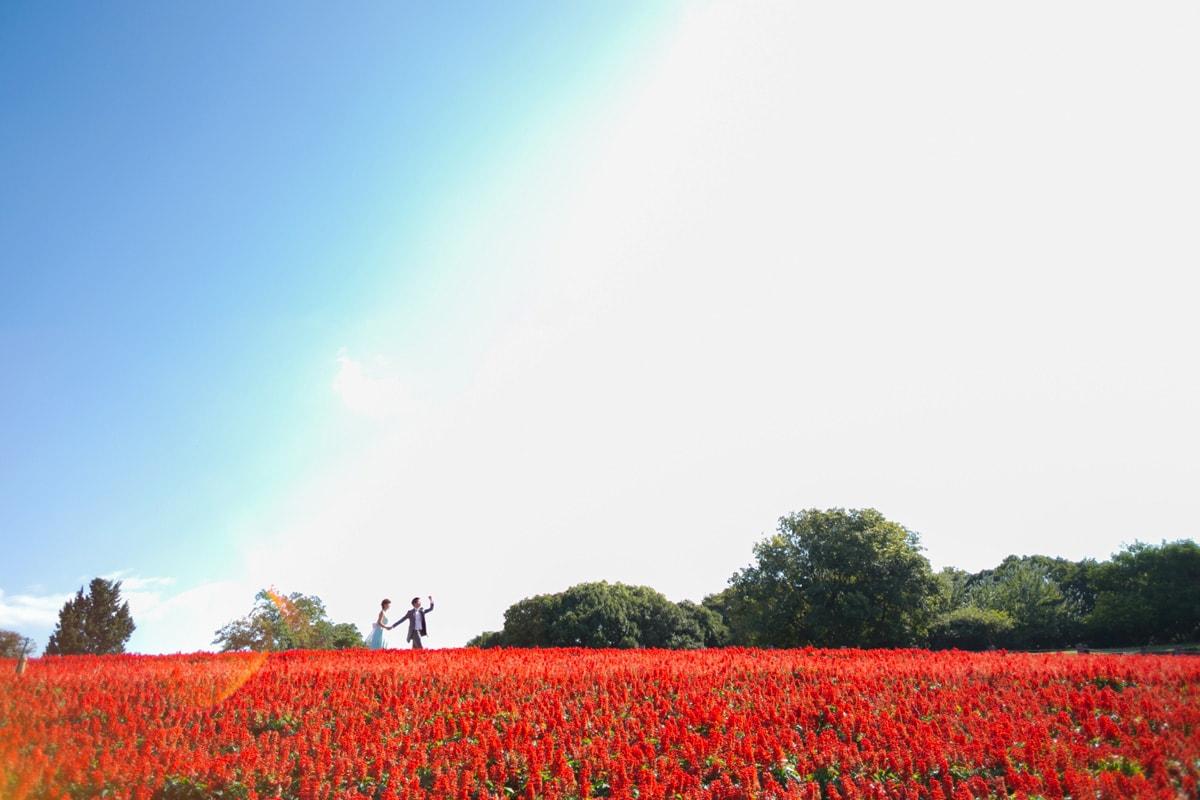 大阪鹤见绿地花博纪念公园
