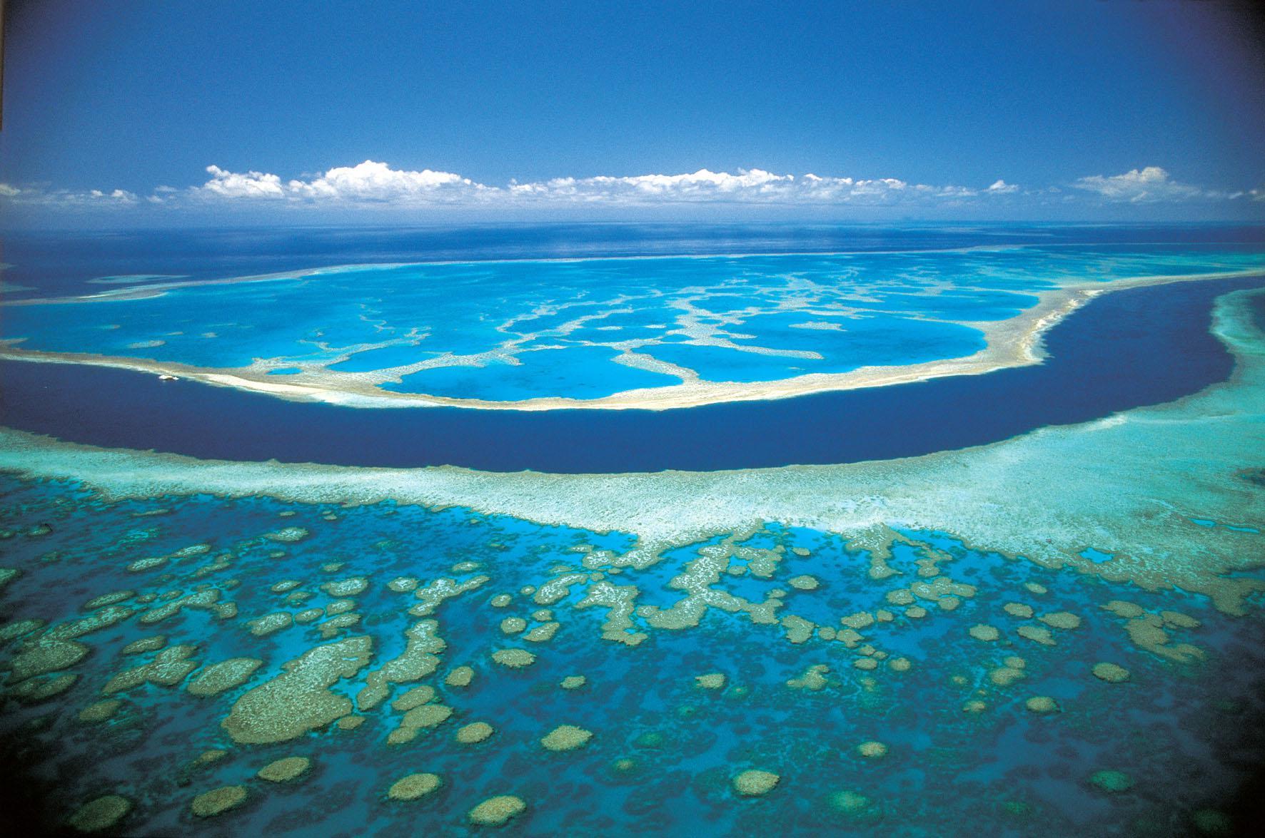 参加Cruise Whitsunday Reefsleep露营2日游攻略,参加Cruise