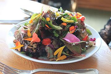 在苏克海湾之家享用美味的花草创意料理