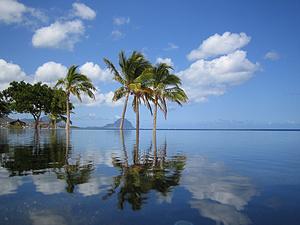 毛里求斯 6天 在毛里求斯回归最初的海洋