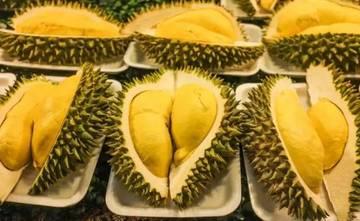 2017 清迈香醇榴莲+热带水果自助狂欢节