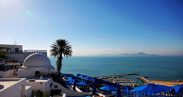 突尼斯突尼斯市旅游
