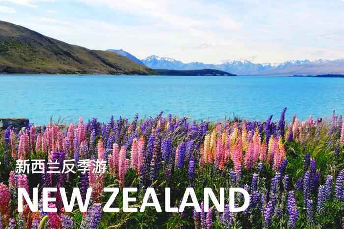 新西兰13日极限蜜月定制游(《爸爸去哪儿》同款玩法+提卡波湖畔仰望银河+体验双人蹦极+徒步探索冰川+霍比屯之旅)